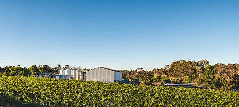 VOYAGER_ESTATE_winery-in-article-(1).jpg
