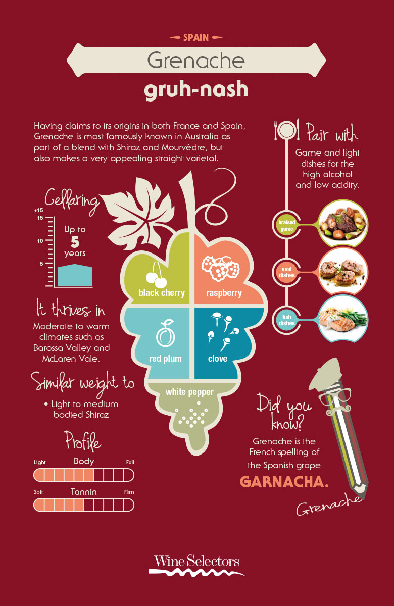 Grenache red wine infographic